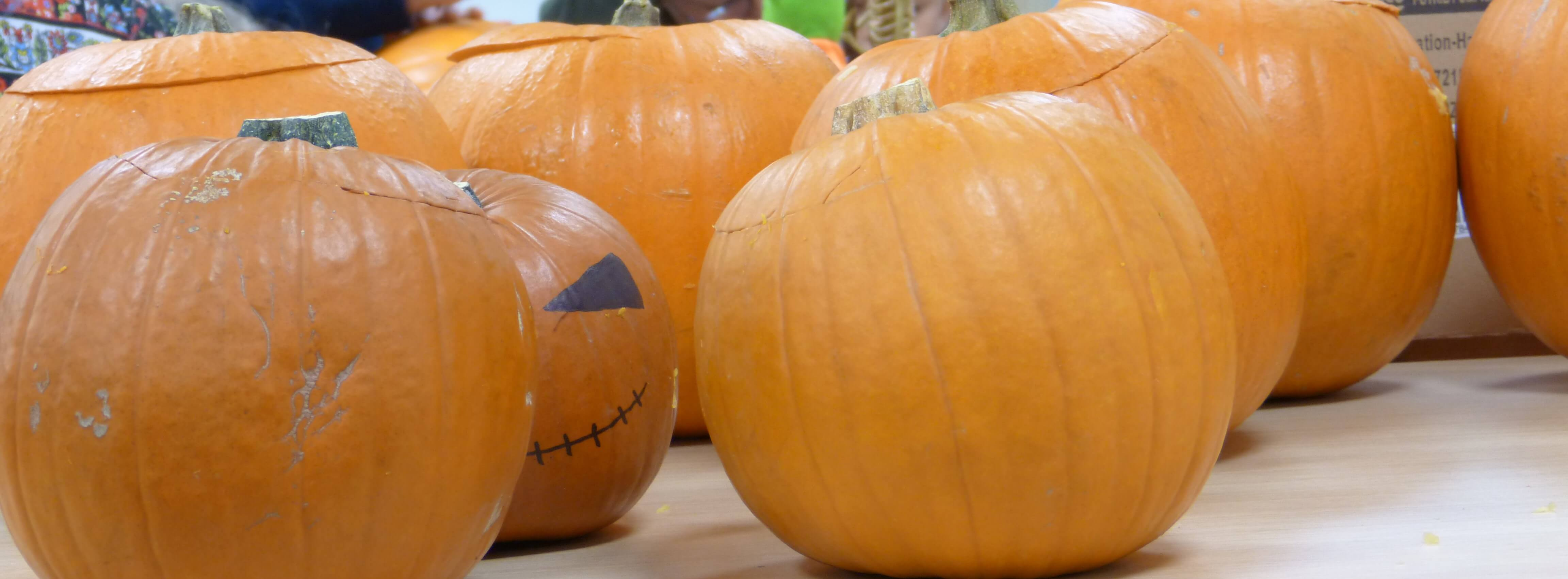 No spooks in Grimsby as 'Full Families' enjoy Halloween fun